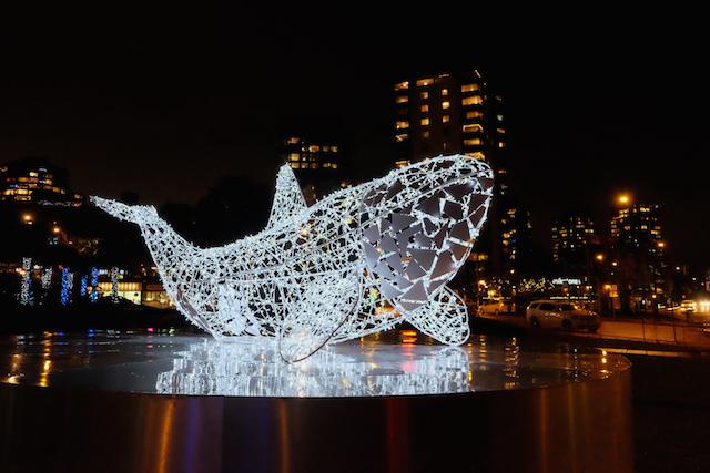Luna Whale Lumière Vancouver