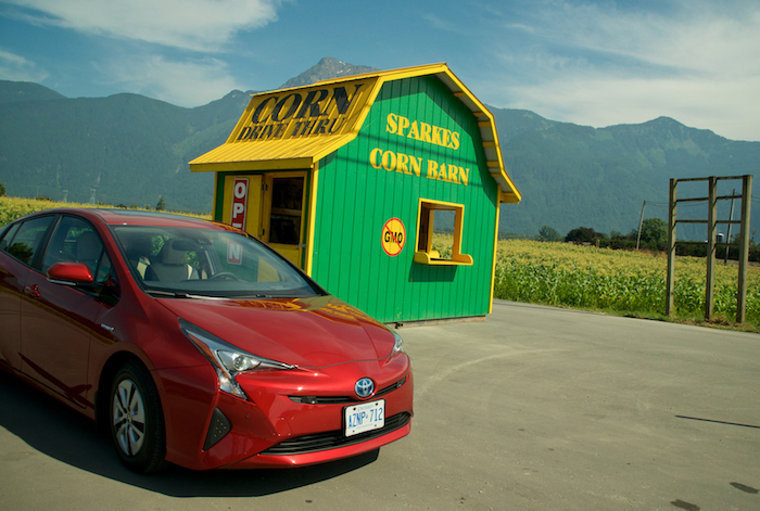 How To Be An Uber Driver >> Slow Food Cycle Farm Tour in Agassiz » Vancouver Blog Miss604