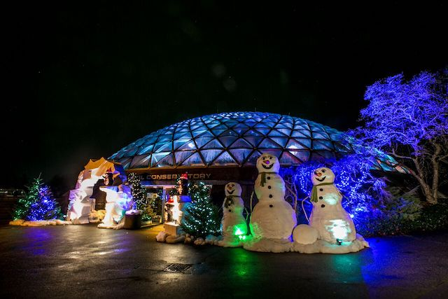 Holiday Heights at Bloedel Conservatory - Arctic Oasis