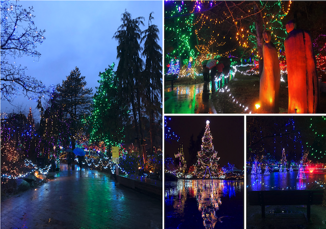 VanDusen Festival of Lights 2017-2018