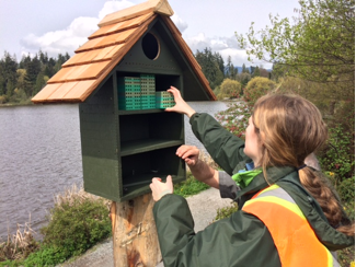 Stanley Park Ecology Society Bee Condo