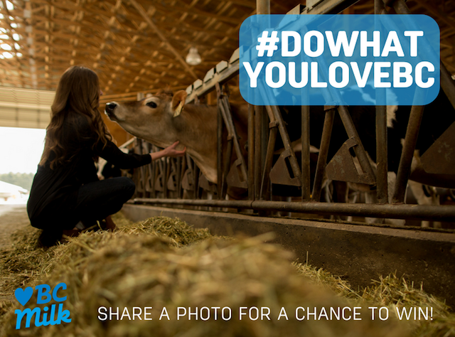 BC Dairy Association #DoWhatYouLoveBC