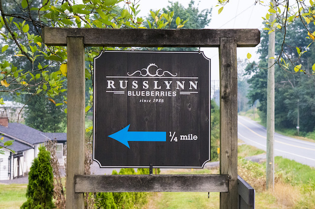 RussLynn Blueberries