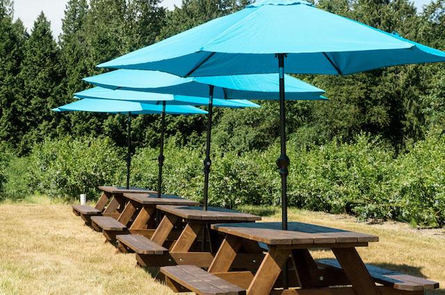 RussLynn Picnic Umbrellas