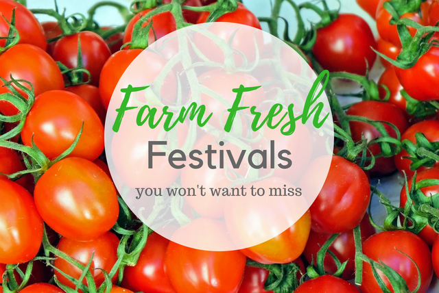 Fresh Farm Festivals You Won't Want to Miss