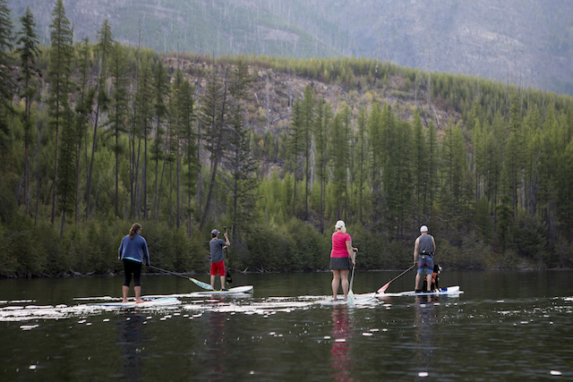 Cranbrook SUP Photo by Abby Cooper