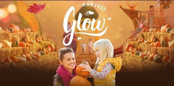 Harvest Glow in Langley