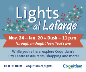 Lights at Lafarge in Coquitlam