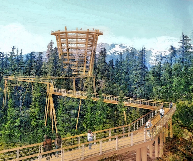 Elevated Tree Walk Proposed for Sea to Sky Gondola