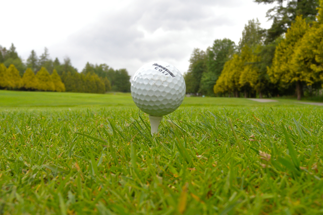 Vancouver Parks Golf - Fraserview - Miss604 Photo