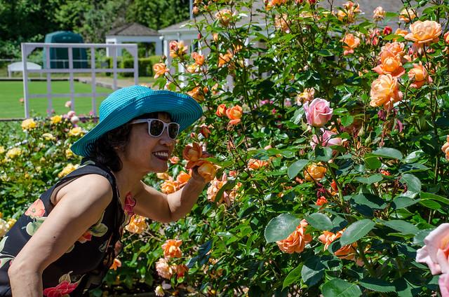 Coquitlam Centennial Rose Garden