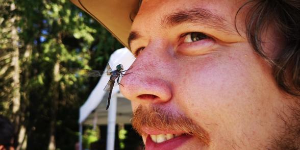 SPES Insect BioBlitz