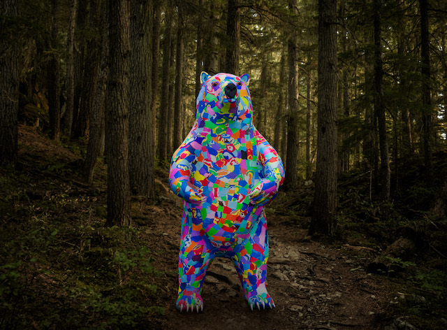 Waste to Wonder Bear