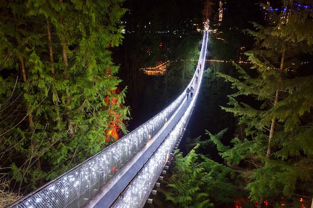 Canyon Lights at Capilano Suspension Bridge Park