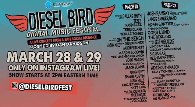 Diesel Bird Festival