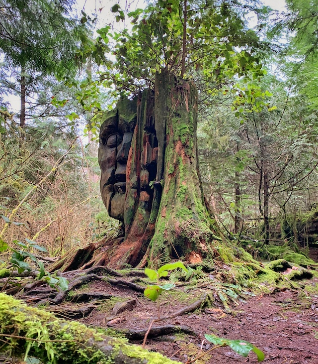 Two Spirit / God Head in Stanley Park - Rebecca Bollwitt Photo