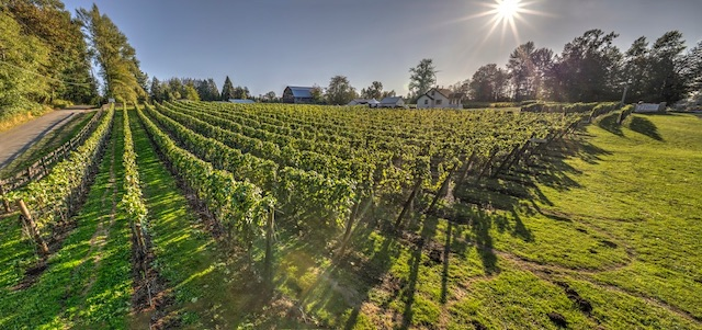 Township 7 Winery - Provided Image