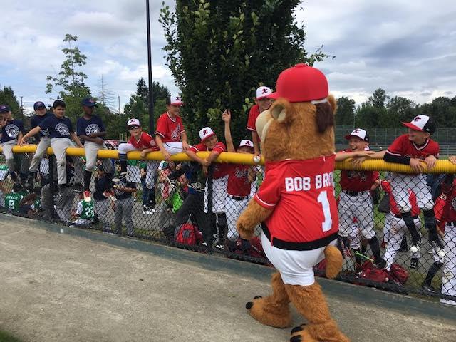 Bob Brown Bear