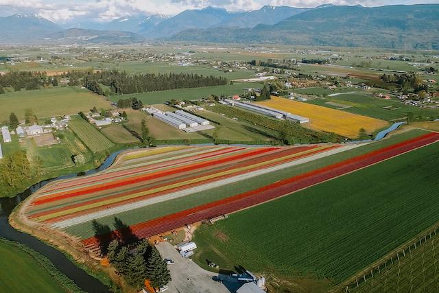 Chilliwack Tulip Festival Aerial