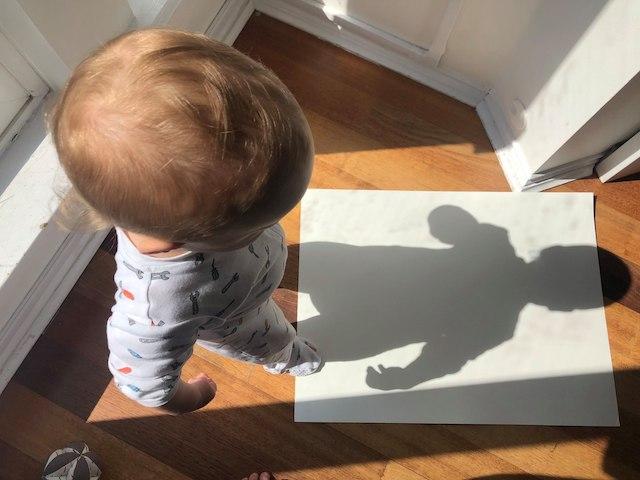 Art at Home Shadows