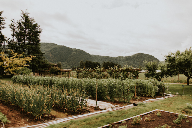 Field House Farms Photo by Robyn Bessenger