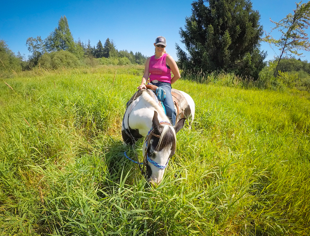 Horseback Trail Riding in Campbell Valley Park