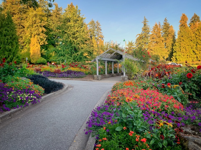 Stanley Park Rose Garden Path - Colours of the Season at Gardens Around Vancouver