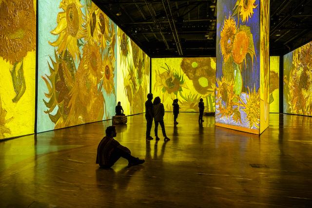 Imagine Van Gogh. Photo by Laurence Labat