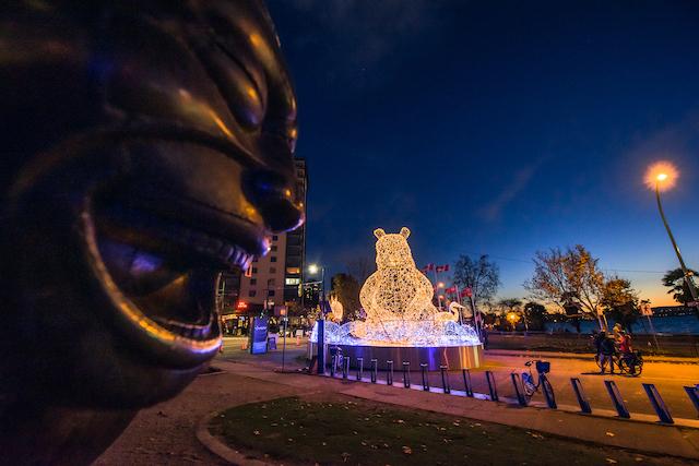 Lumiere Bear Photo by Christopher Edmonstone