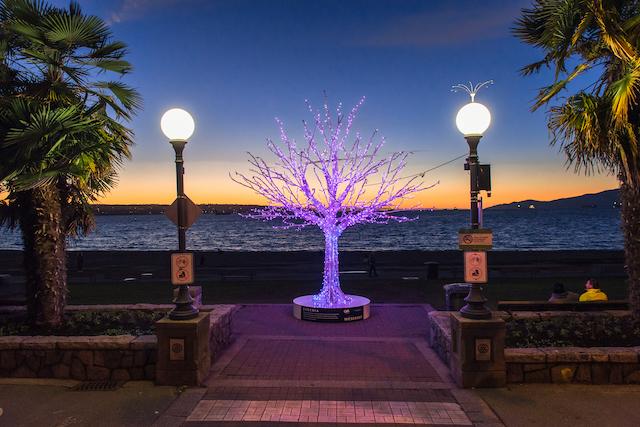 Lumiere Tree Photo by Christopher Edmonstone