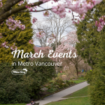 March Events in Metro Vancouver Cherry Blossoms