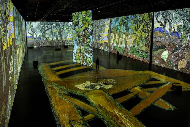 Imagine Van Gogh - Laurence Labat