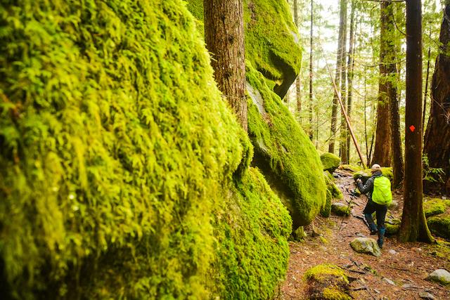 Sigurd Trail. Photo: Stephen Hui