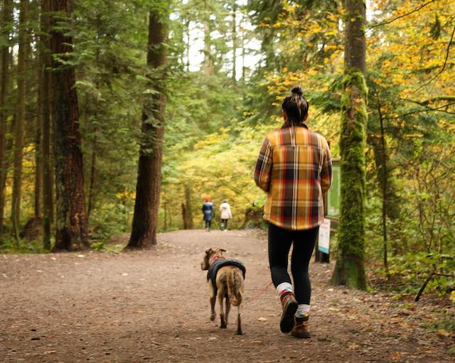 10 Fun Things to Do in Coquitlam This October